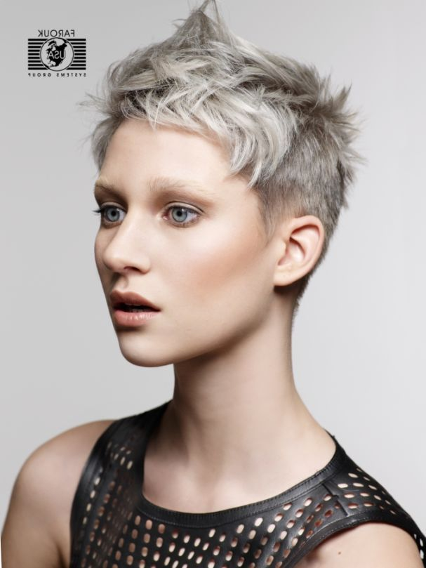 Pictures Of Short Hairstyles For Gray Hair | Hair | Pinterest ...