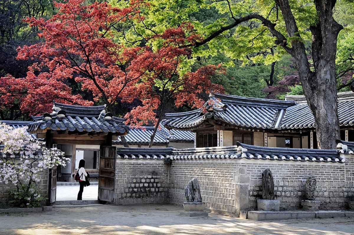 el jard n secreto del palacio changdeokgung d jate