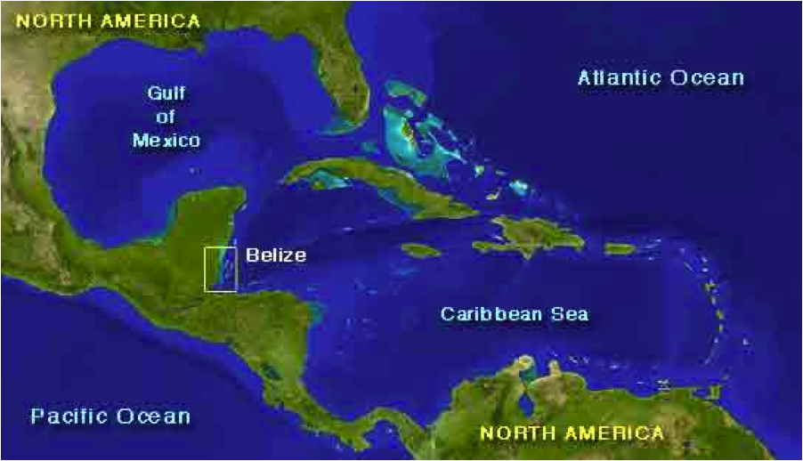 A map that shows where the reef is.