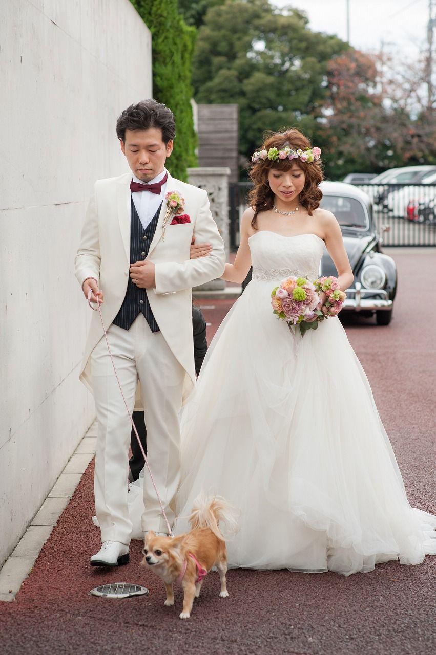 Wedding Dog ウェディング ペット