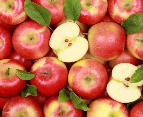 Alimentos Para Perder Barriga Perder Peso Dieta E Alimentos