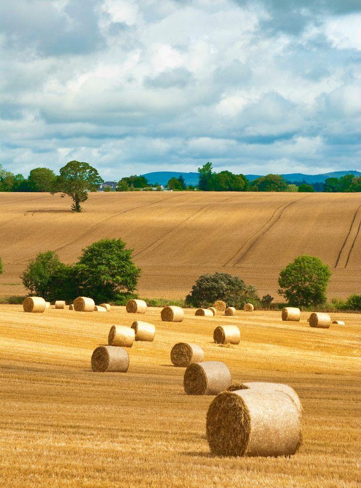 Another Harvest Picture Alentejo Imagens Fantasticas E Fotos De