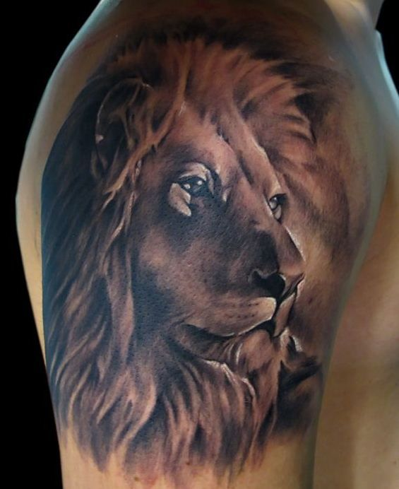Stunning Lion With Full Mane Tattoo On Bicepshoulder Inkt