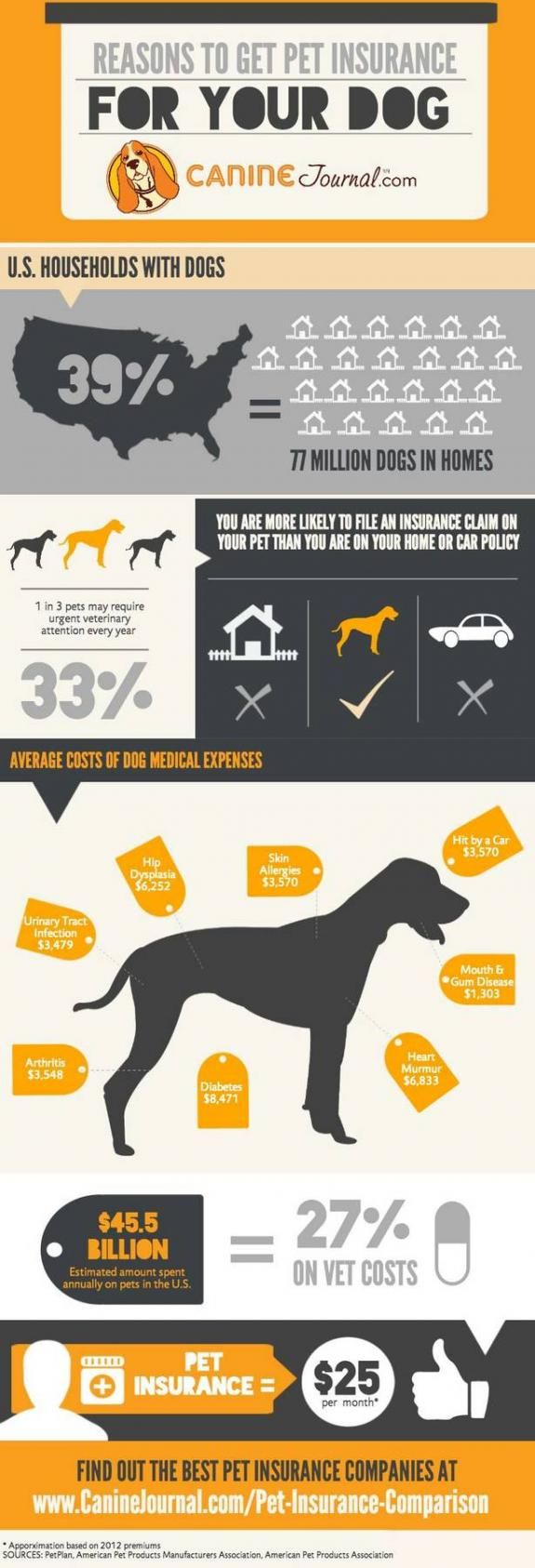 What's The Best Pet Insurance Company For 2020 Dog