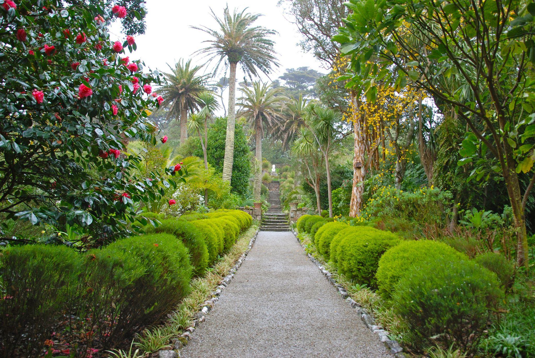 Path in Abbey Gardens, Tresco, Isles of Scilly, Cornwall, England ✯ ωнιмѕу ѕαη∂у