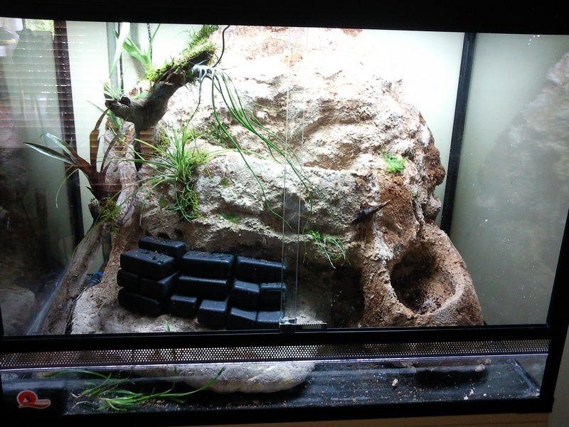 how to build terrarium backing