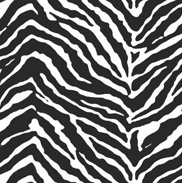 Photo of Zebra Print – Window Vinyl / 1 metre x 65cm / Landscape