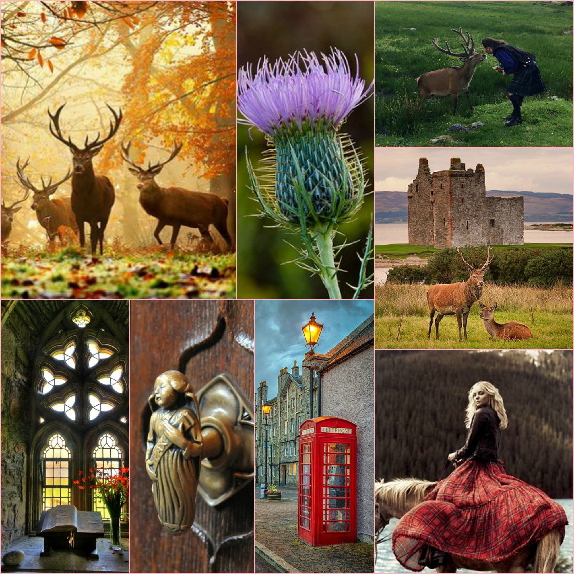 Beautiful Pictures with a English, Victorian, Scottish and Irish twist. https://www.ouwbollig.eu https://www.facebook.com/ouwbollig.eu/?ref=h