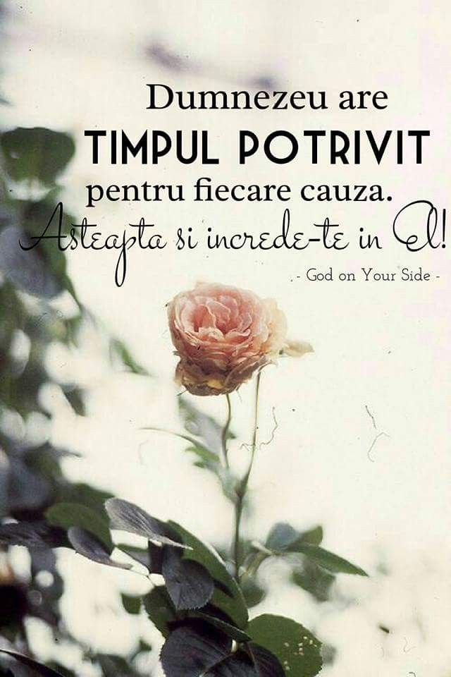 56 Poezii Si Cantari Crestine Ideas Quotes Poems Bless The Lord
