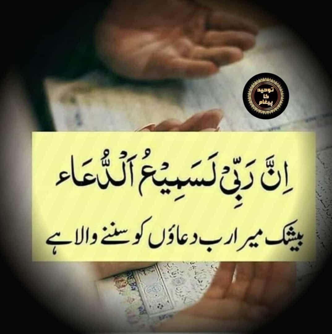 Pin By Zeenat Nazeer On Quran