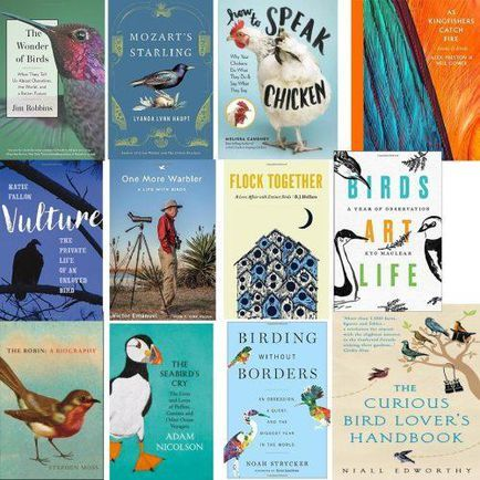 The 12 Best Books About Birds And Birding Of 2017 Reading Ideas