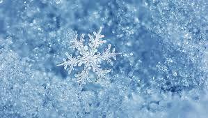 Snow에 대한 이미지 검색결과