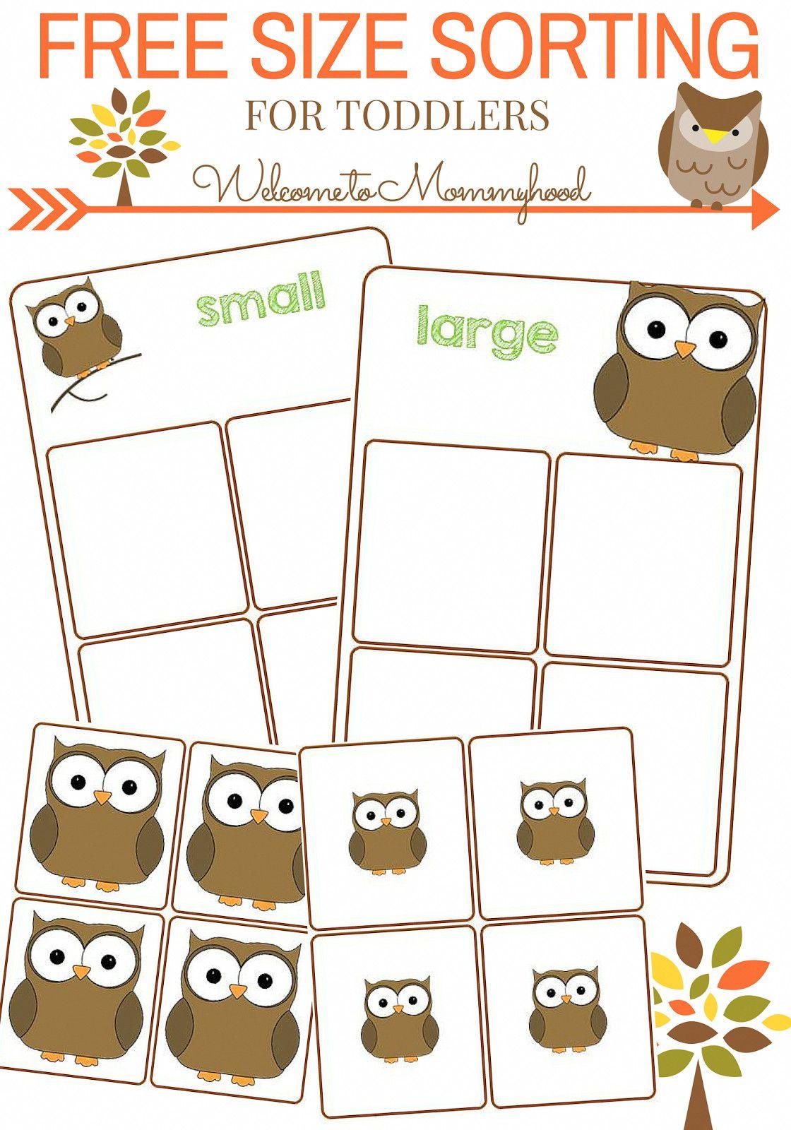 5 Size Sorting Animal Worksheets In