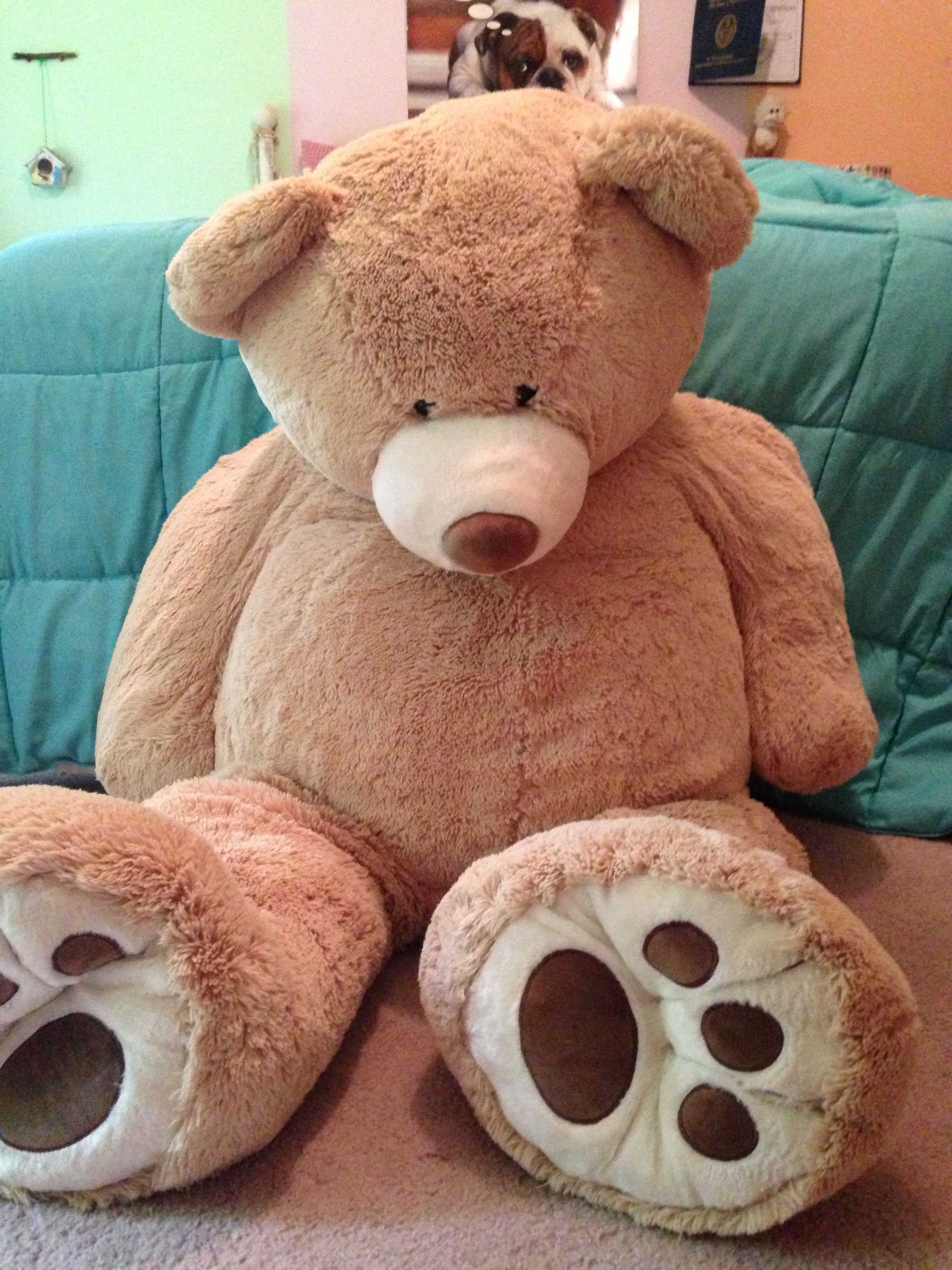Giant teddy bear!!!