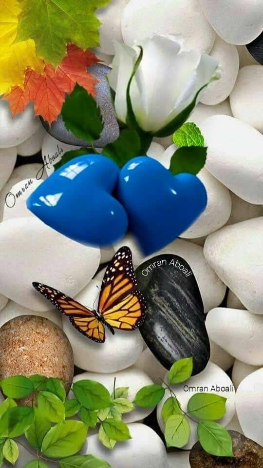 Sevgi... Tanrı tarafından insana verilen  büyük bir nimettir... Kiminin elinde heba  Kiminin kalp'♥️de vefa olur...