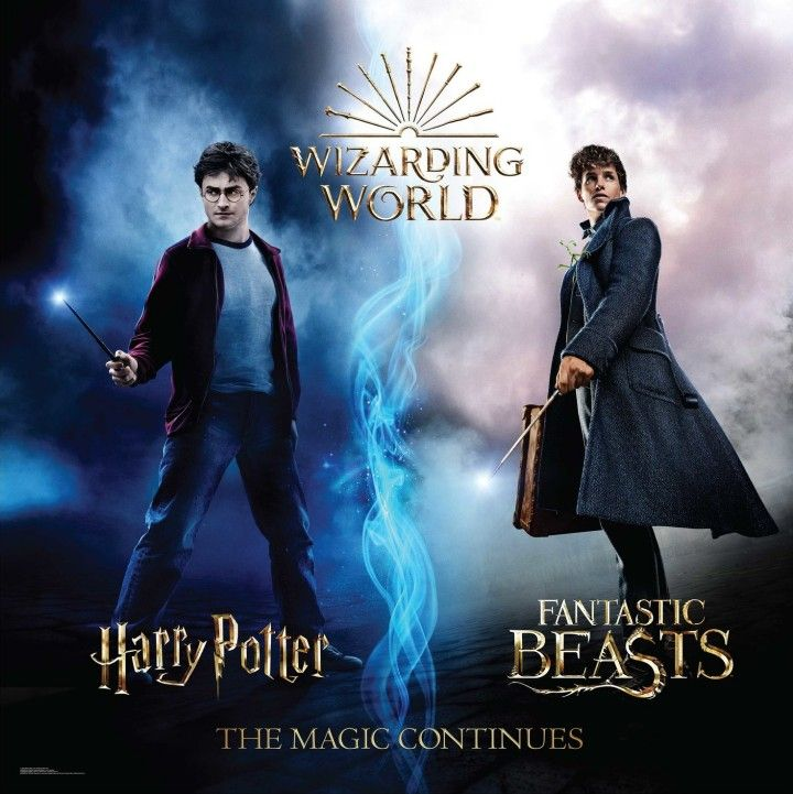 Harry Potter And Fantastic Beasts Harry Potter Filme