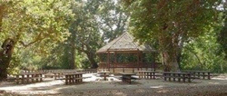 Biddle Park Arroyo Grande Google Search Outdoor Outdoor Structures Outdoor Decor