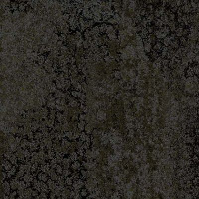 1800 Dark Taupe Gecko Collection Carpet Tile Godfrey Hirst Thảm Tấm Thảm Trải San Interline Carpet Australia Carpet M Thảm Trải San Thảm Geckos