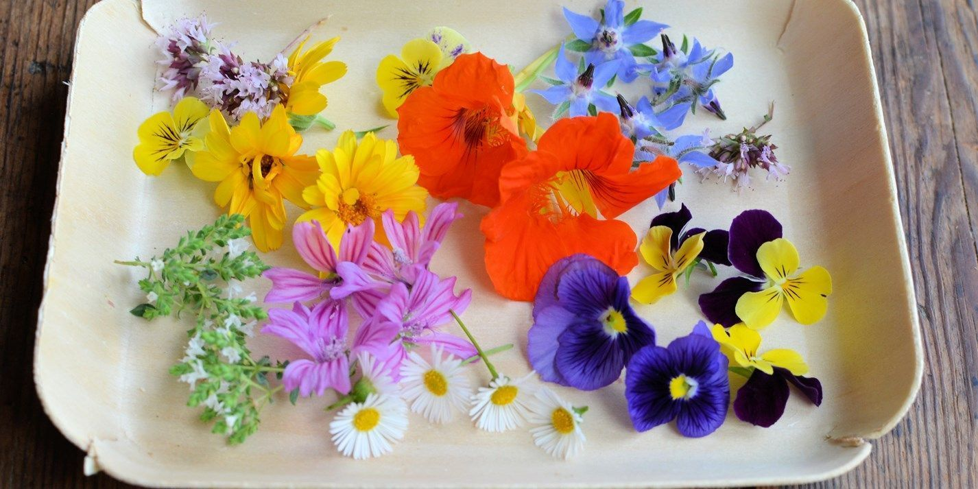 Edible Flower Recipes Tulips Roses And Herbs Great British Chefs British Ch British Chefsbritish Ed In 2020 Edible Flowers Recipes Flower Food Edible Flowers