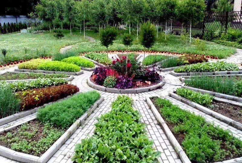 Vegetable garden, raised to the rank of art. 35+ decorative gardens for inspiration