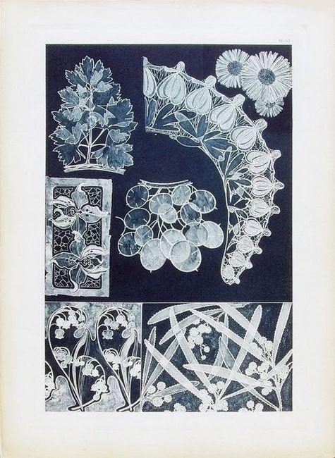 Plate+53.jpg (475×650)