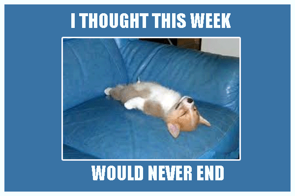 I Thought This Week Would Never End Funny Meme Funny Memes Memes Funny