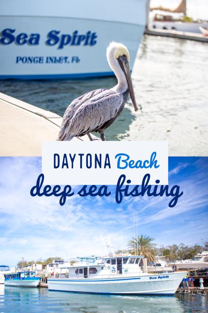 Such A Fun Thing To Do In Daytona Beach Daytonabeach Floridavacation