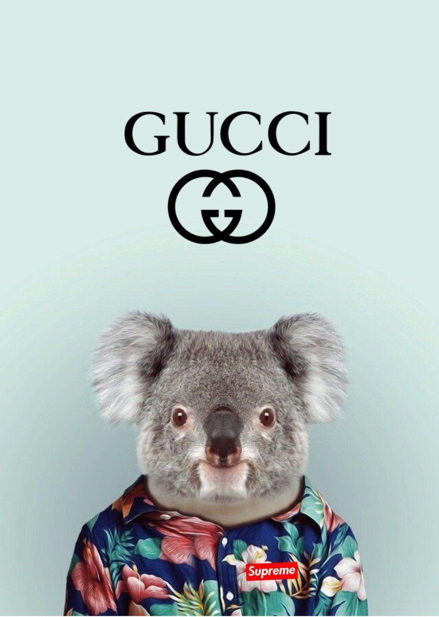Supreme Gucci Wallpapers   Top Free Supreme Gucci ...