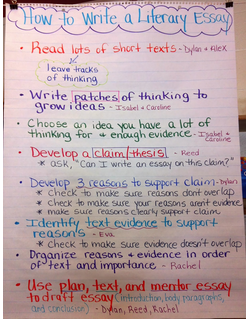 How to write a literary essay anchor chart school language arts
