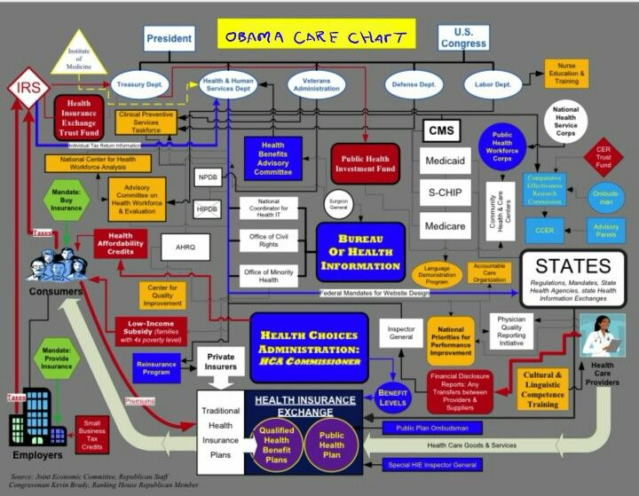 Obama Care Organizational Chart Government Bullshit Pinterest - organizational chart