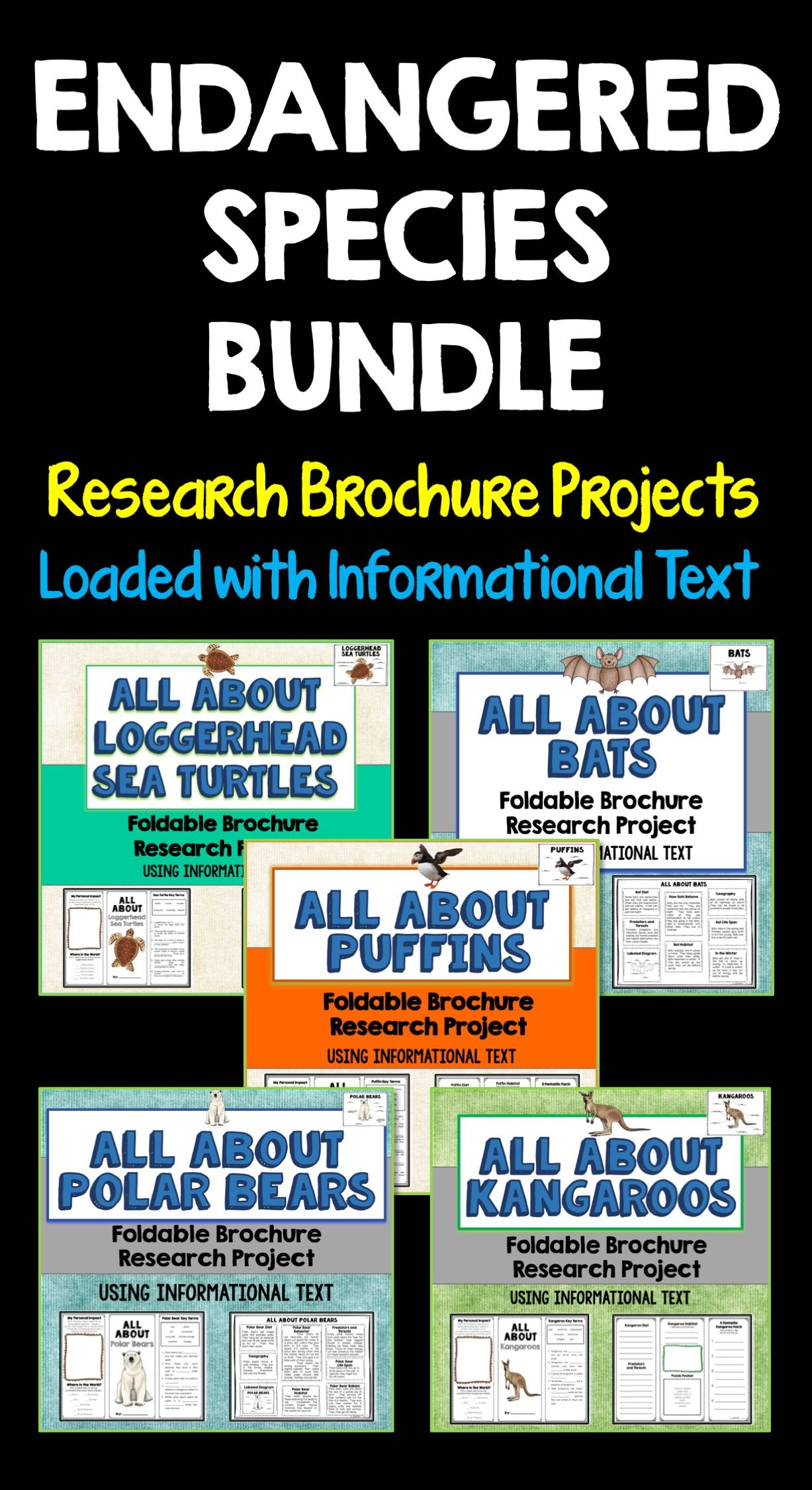 Endangered Species Bundle Brochure Projects Using