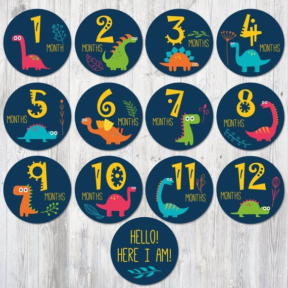 photo relating to Baby Month Stickers Printable called Dinosaurs Child Regular monthly Stickers Printable, Boy Milestone