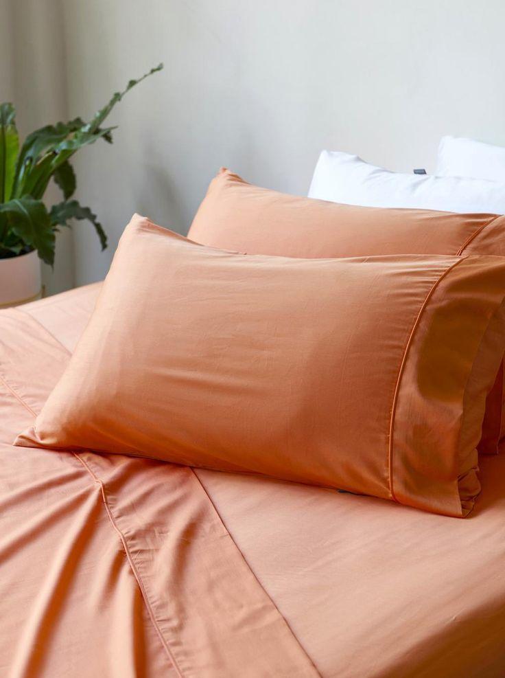 Bamboo Charcoal Fitted Sheet   Apricot By Ettitude. Ettitude.com.au