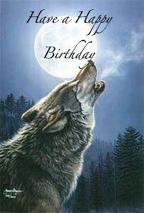 Pin By Lea Burns On Birthday Greetings Happy Birthday Photos Happy Birthday Wolf Birthday Wishes