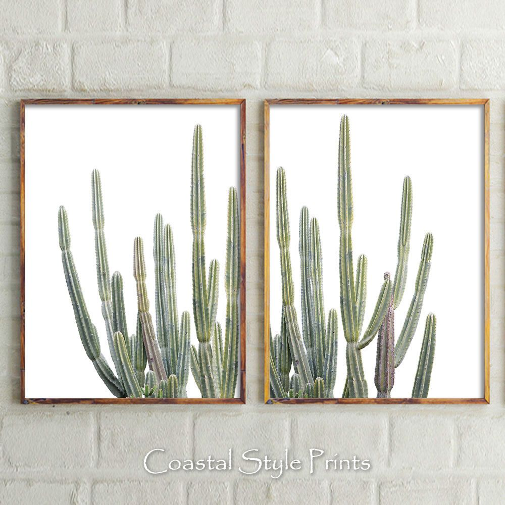 Desert Cactus Prints Wall Decor Botanical Print