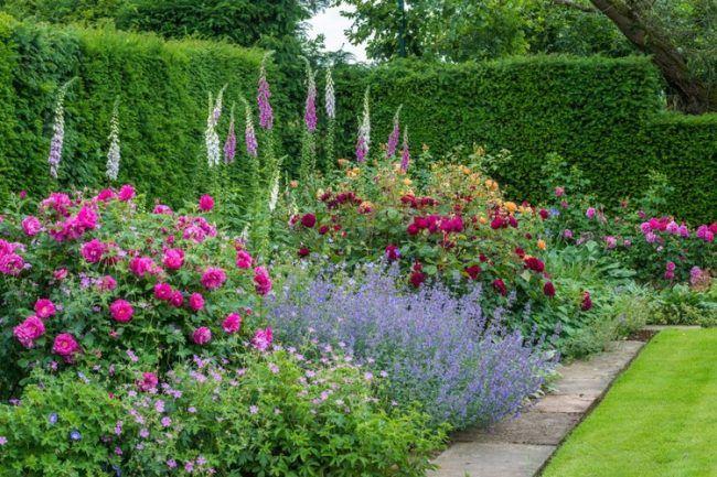 Blumenbeet Ideen gartengestaltung blumenbeet rosenbegleitpflanzen ideen