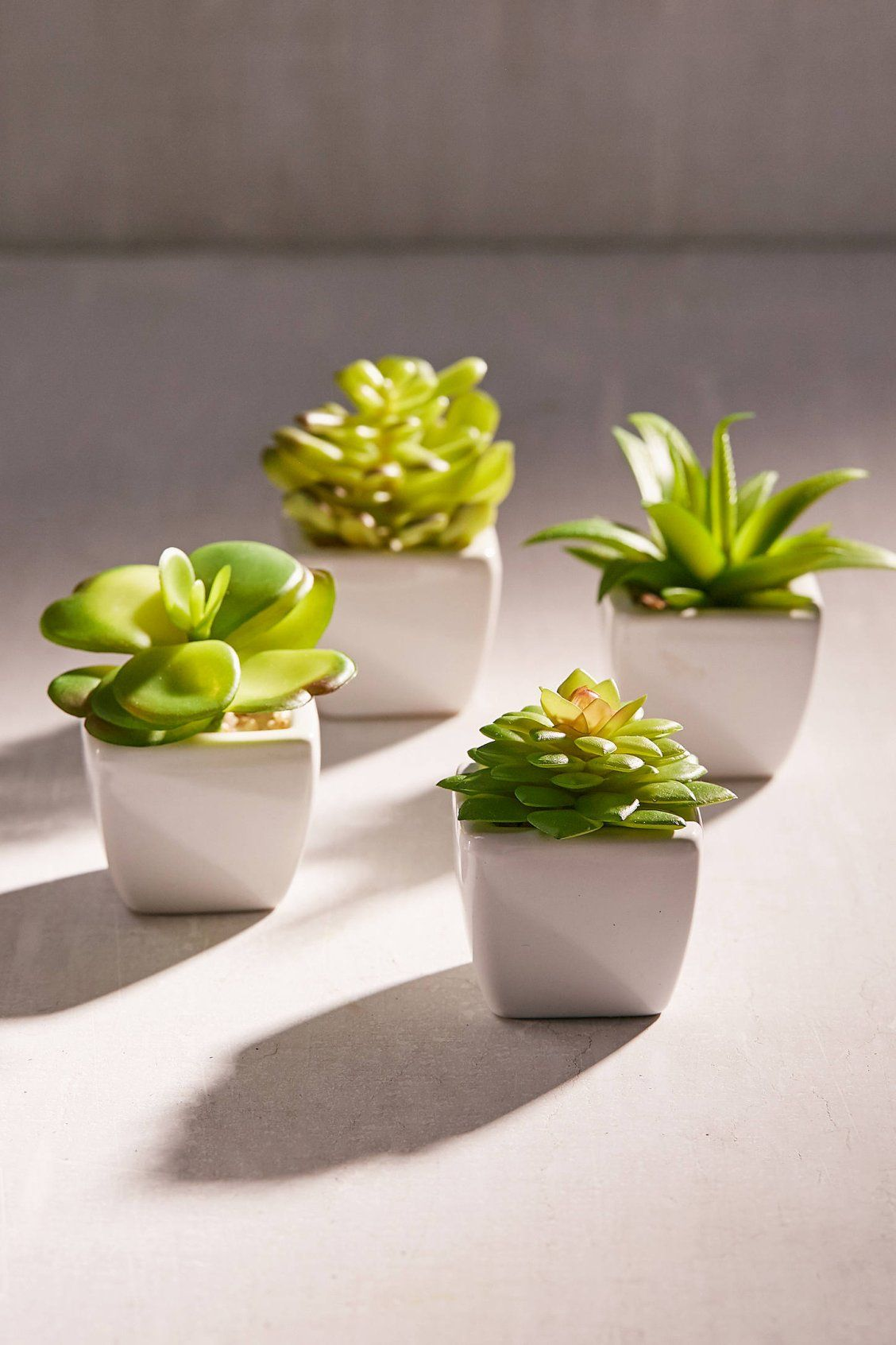 Potted Faux Echeveria Succulent Plant Fake Plants Decor Small Bathroom Decor Bathroom Plants