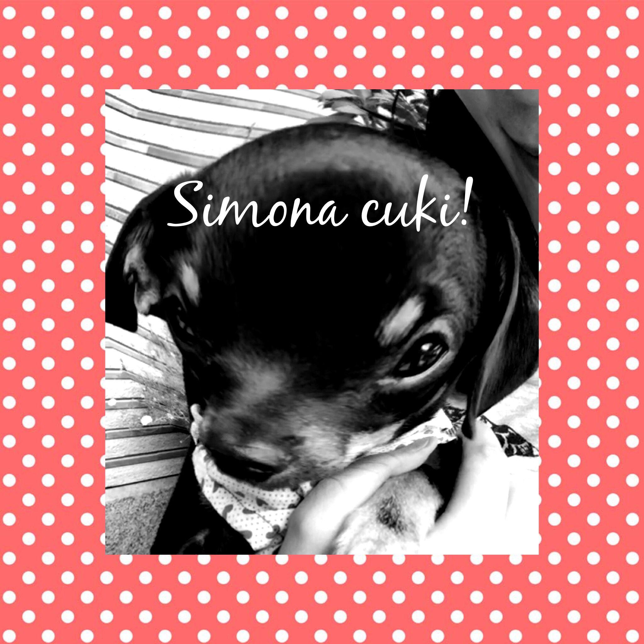Uncategorized Simona Suh cukii y simon simona pinterest