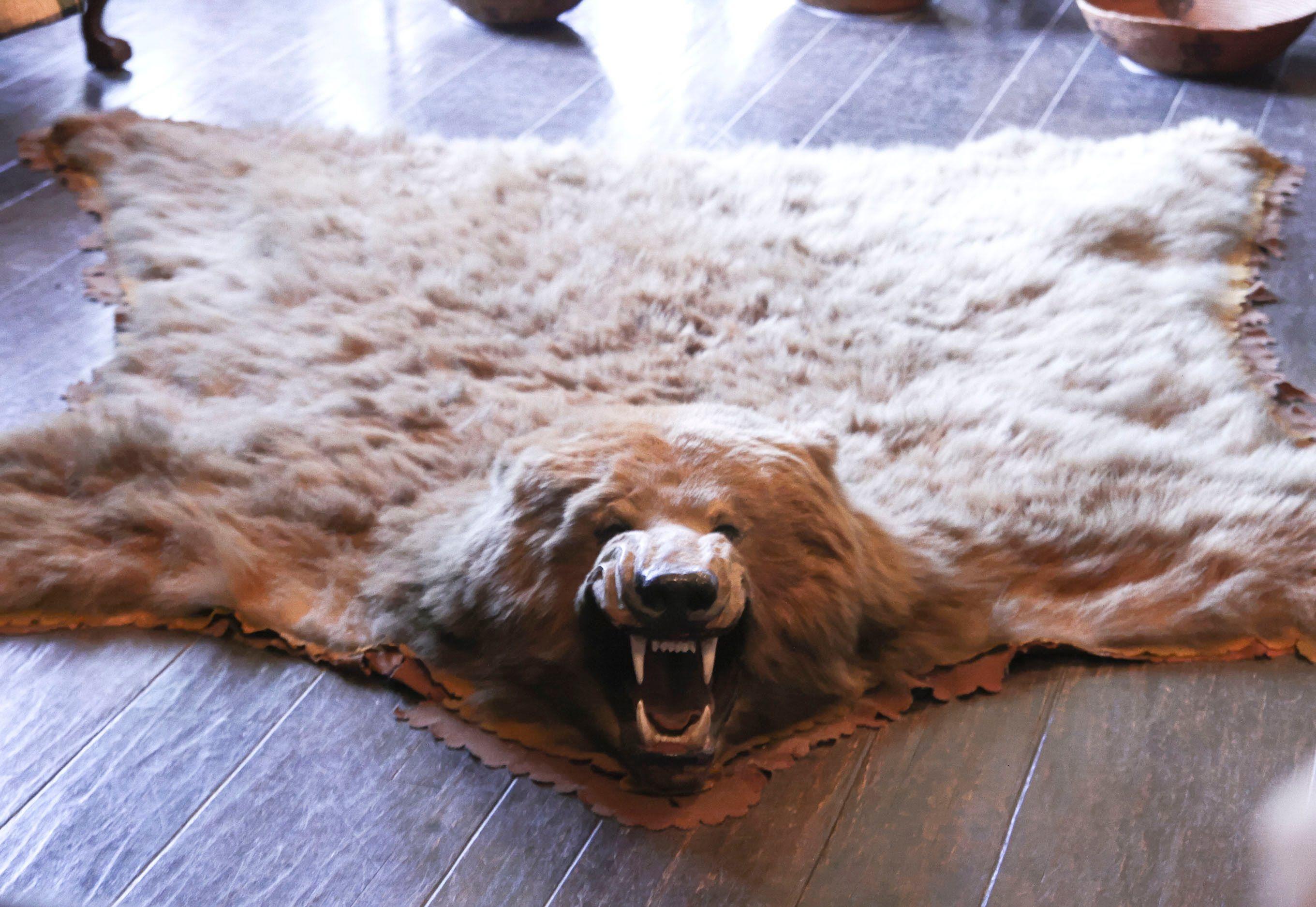 Ideas For Faux Bear Skin Rug