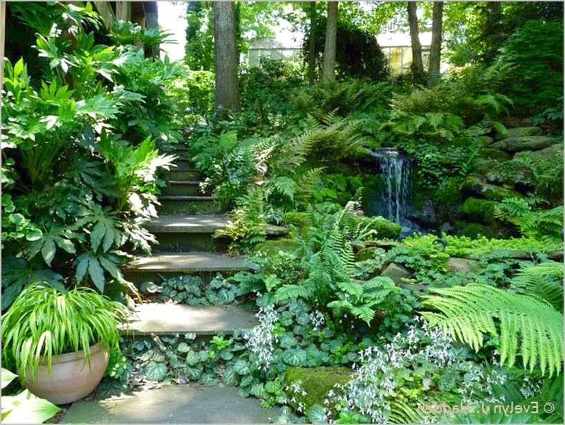 Small Woodland Garden Ideas | Shade garden design