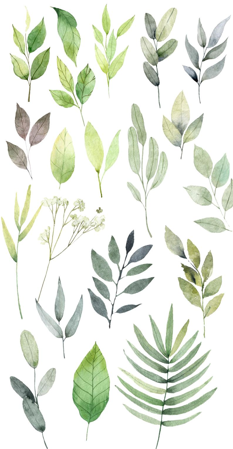 Watercolor Leaves Clipart Watercolor Floral Clip Art Hand Painted Greenery Png Floral Digital Plants Clip Art 86 In 2021 Leaf Clipart Floral Watercolor Watercolor Leaves