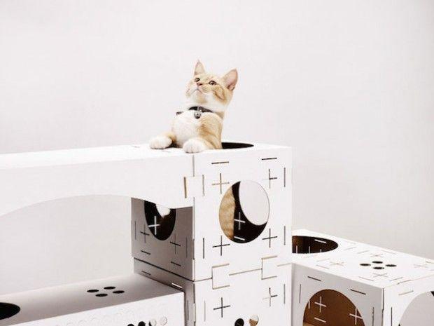 BLOCKS par Poopy Cat