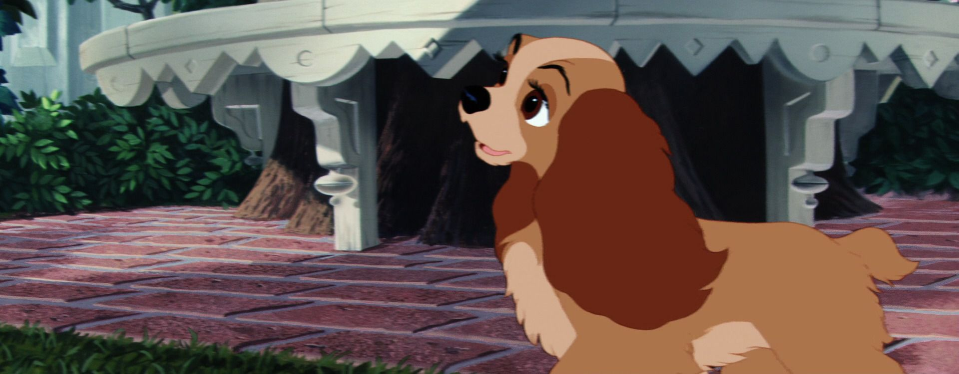 Lady And The Tramp 1955 Disney Screencaps Lady And The Tramp Disney Ladies Disney