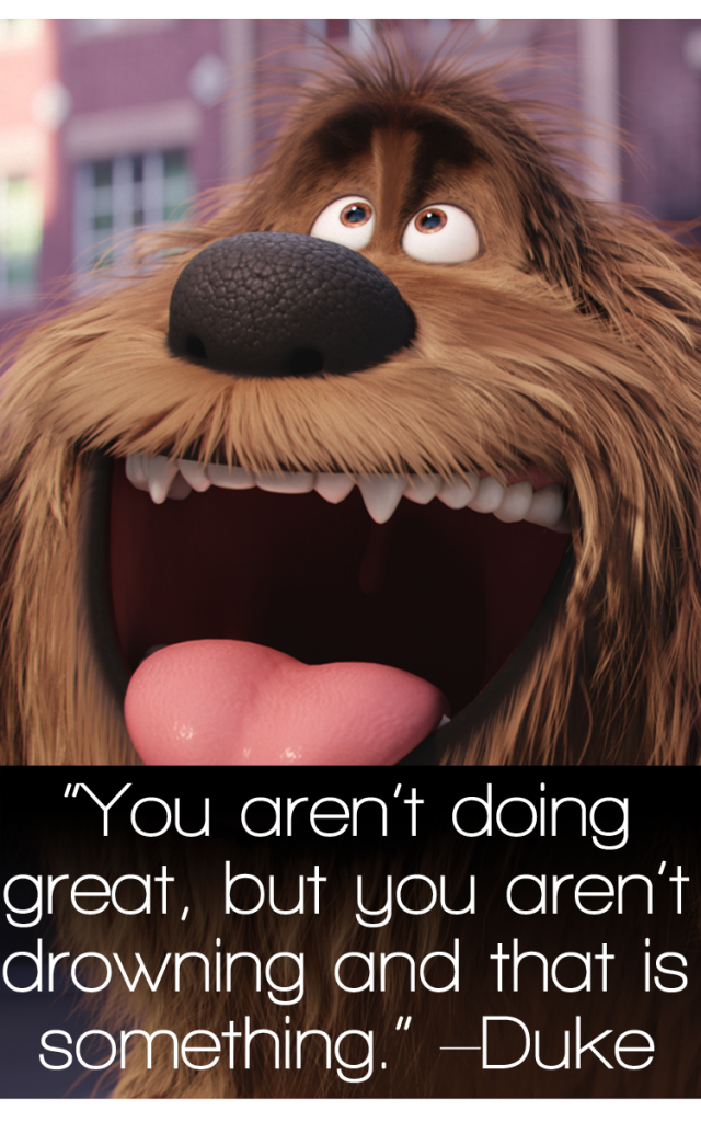 The Secret Life Of Pets Quotes Top Movie Quotes Enza S Bargains Movie Quotes Funny Top Movie Quotes Animal Quotes