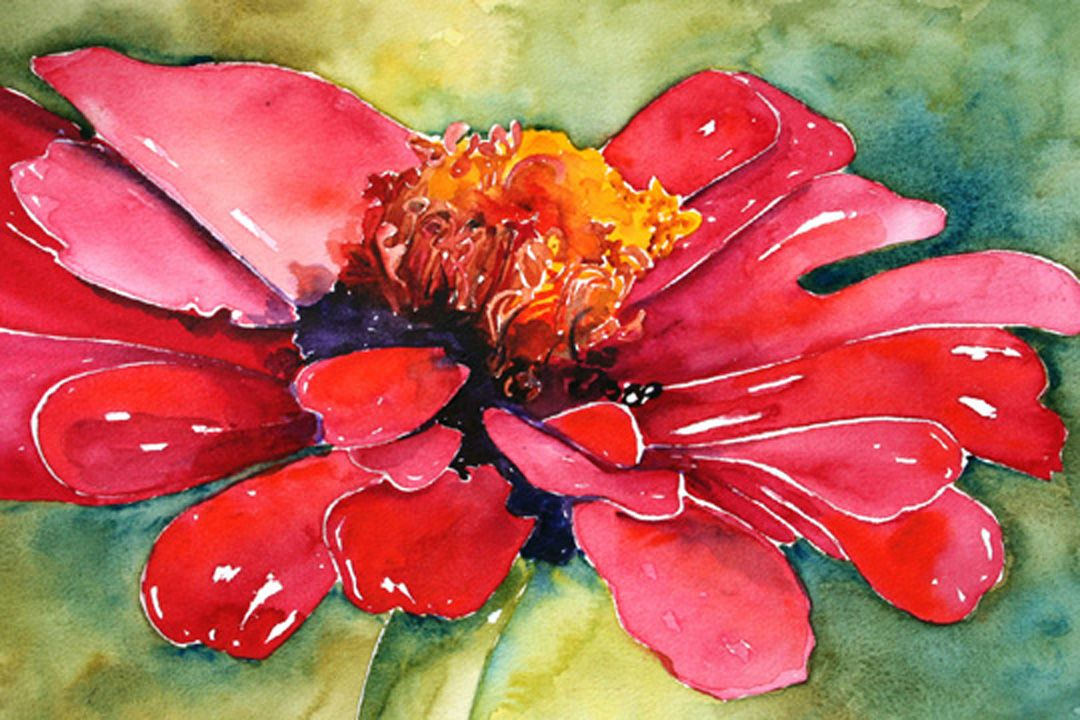 Zinnia SOLD Flower art, Floral watercolor, Watercolor