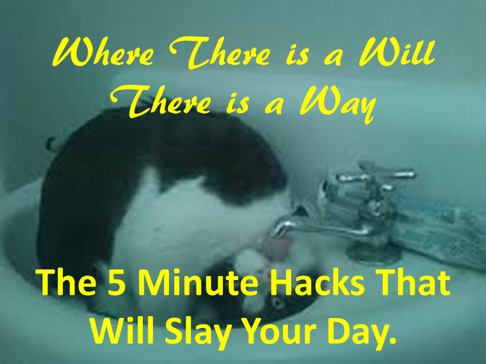 The 5 Minute Hacks That Will Slay Your Day.
