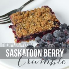 Saskatoon Berry Crumble | The DIY Mommy