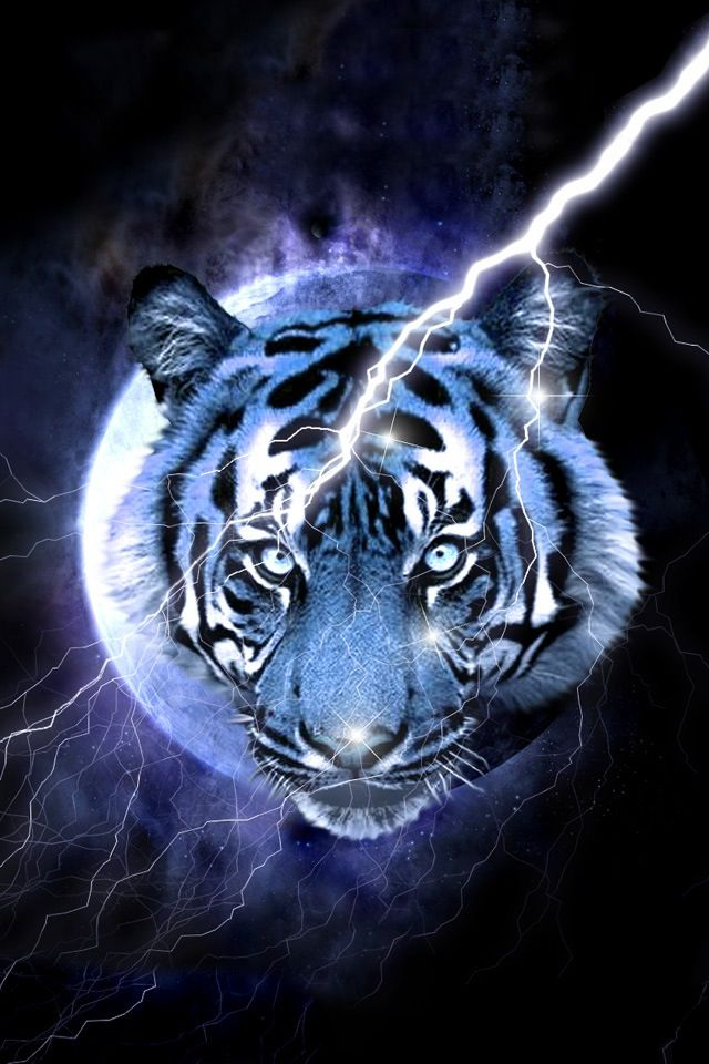 Blue Tiger Pet Tiger Big Cats Art Tiger Wallpaper