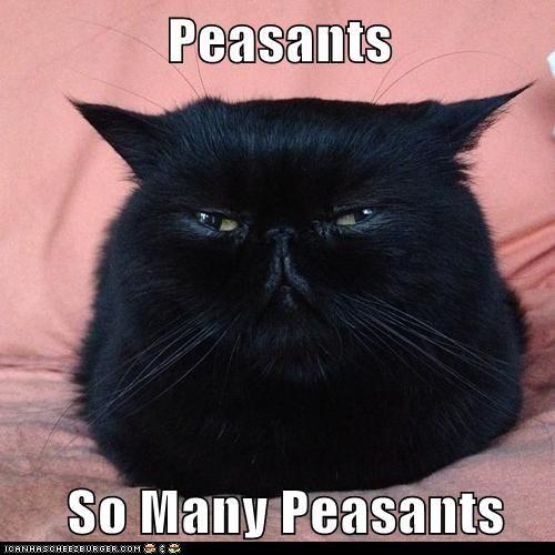 Peasants | Cat, Animal and Humor - 37.3KB