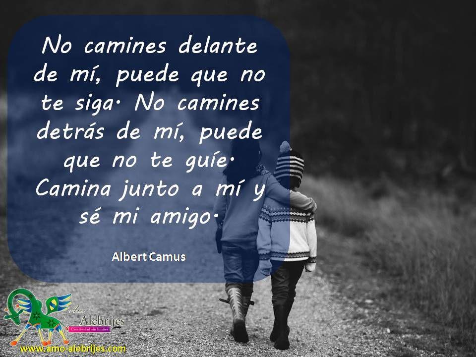 Frases Celebres Albert Camus 1 Frases